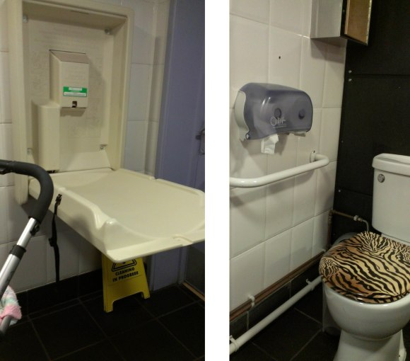Phoenix Picturehouse changing facilities