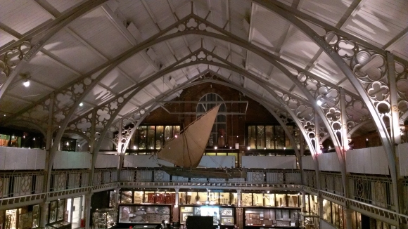 Pitt Rivers view from top gallery